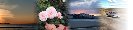 Collage of Sunset, Roses, Headland and MR2